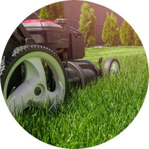 lawn care ct