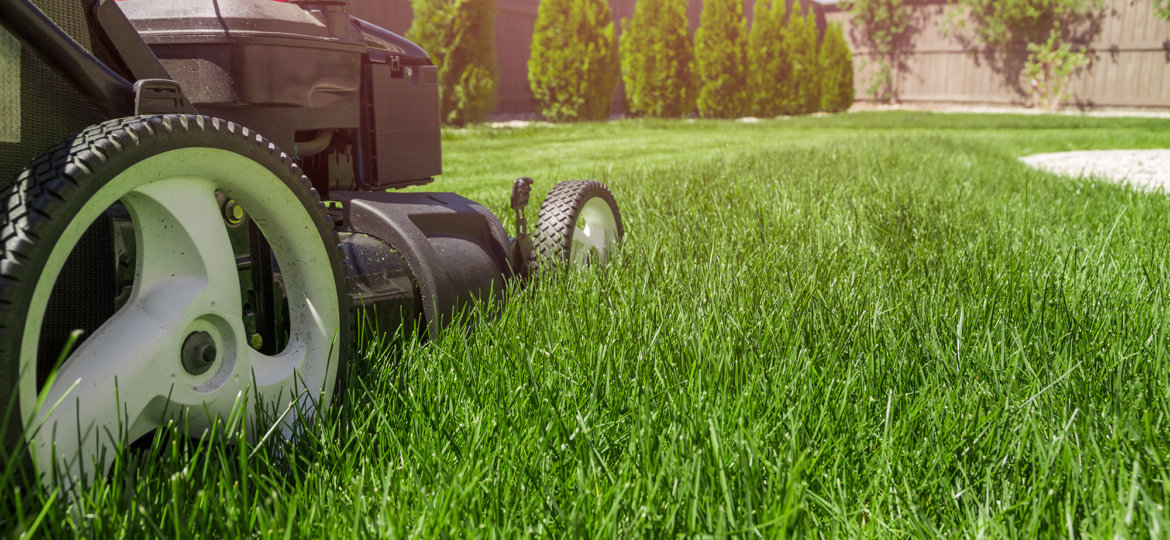 lawn-care-services-ct